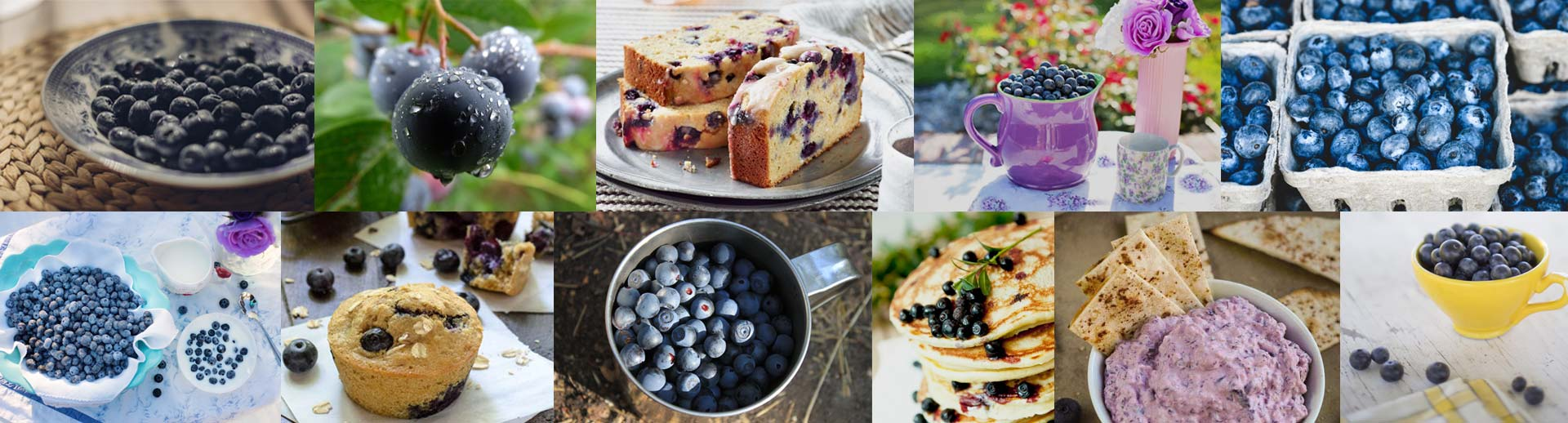 Blueberry bread, blueberries, blueberry muffins, blueberry pancakes, blueberry dip photos
