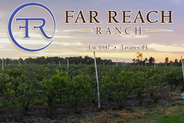 Far Reach Ranch, Est. 1947, Tavares FL